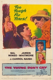 Os Jovens não Choram - Poster / Capa / Cartaz - Oficial 1