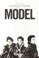 Model (Model)