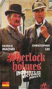 Sherlock Holmes: Incidente em Victoria Falls - Poster / Capa / Cartaz - Oficial 2