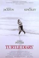 Ele, Ela e a Tartaruga (Turtle Diary)