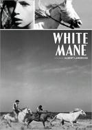 O Cavalo Branco (Crin Blanc: Le Cheval Sauvage)