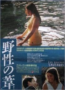 Rosas Selvagens - Poster / Capa / Cartaz - Oficial 5