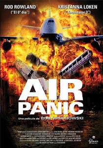 Desastre Aéreo - Poster / Capa / Cartaz - Oficial 1