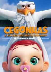 Cegonhas - A História que Não te Contaram - Poster / Capa / Cartaz - Oficial 1