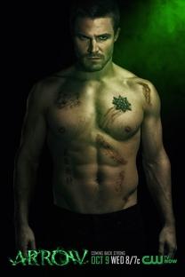 Arrow (2ª Temporada) - Poster / Capa / Cartaz - Oficial 8
