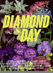 Diamond Day - Poster / Capa / Cartaz - Oficial 1