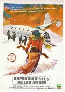 Os Sobreviventes dos Andes - Poster / Capa / Cartaz - Oficial 3