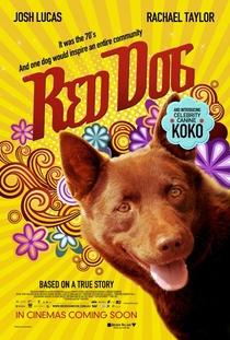 Cão Vermelho - Poster / Capa / Cartaz - Oficial 8