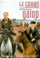 At Full Gallop (Cwał)