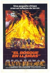 Céu em Chamas - Poster / Capa / Cartaz - Oficial 2