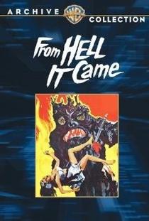 Veio do Inferno - Poster / Capa / Cartaz - Oficial 2