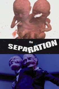 The Separation - Poster / Capa / Cartaz - Oficial 1