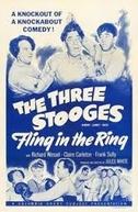 Três sujeitos pancadas (Fling in the ring)