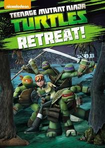 Tartarugas Ninja (3ª Temporada) - Poster / Capa / Cartaz - Oficial 1