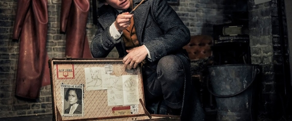 Animais Fantásticos: Os Crimes de Grindelwald | CRÍTICA | Plano Extra