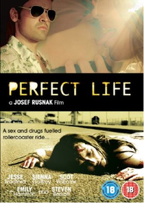 Perfect Life - Poster / Capa / Cartaz - Oficial 1