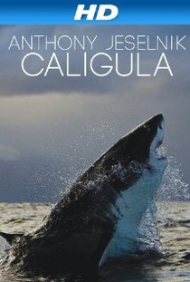 Anthony Jeselnik: Caligula - Poster / Capa / Cartaz - Oficial 1