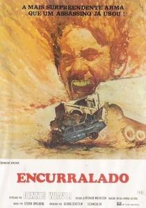 Encurralado - Poster / Capa / Cartaz - Oficial 6