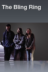 Roubos Hollywoodianos - Poster / Capa / Cartaz - Oficial 1
