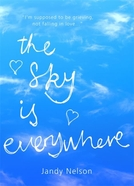 The Sky Is Everywhere (The Sky Is Everywhere)