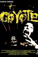 Coyote (Coyote)
