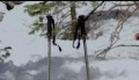 Snow Beast Trailer