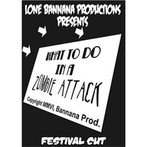 What to Do In a Zombie Attack - Poster / Capa / Cartaz - Oficial 1