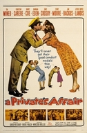 Recrutas e Enxutas (A Private's Affair)
