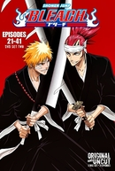 Bleach (2ª Temporada)