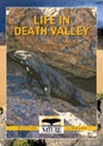 Death Valley - Poster / Capa / Cartaz - Oficial 1