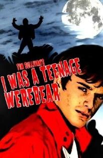 I Was a Teenage Werebear - Poster / Capa / Cartaz - Oficial 1