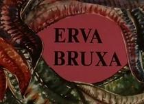 Erva Bruxa - Poster / Capa / Cartaz - Oficial 1