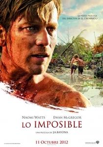 O Impossível - Poster / Capa / Cartaz - Oficial 13