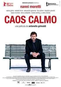 Caos Calmo - Poster / Capa / Cartaz - Oficial 1