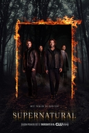 Sobrenatural (12ª Temporada) (Supernatural (Season 12))