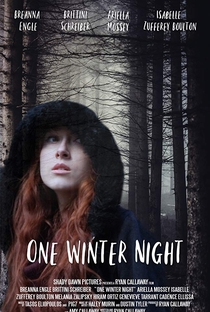 One Winter Night - Poster / Capa / Cartaz - Oficial 1
