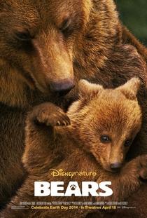 Ursos - Poster / Capa / Cartaz - Oficial 1