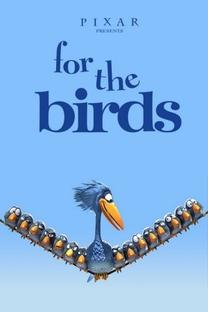 Coisas de Pássaros - Poster / Capa / Cartaz - Oficial 1