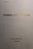 Chinese Salesman (Chinese Salesman)