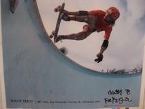 Skateboard kings  - Poster / Capa / Cartaz - Oficial 1