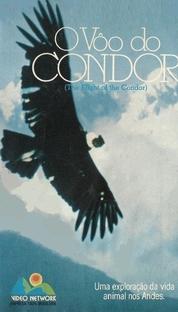 O Vôo do Condor - Poster / Capa / Cartaz - Oficial 1