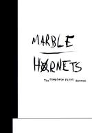 Marble Hornets (1ª Temporada) (Marble Hornets (Season 1))