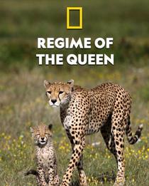 Mamães Felinas: Lições de Sobrevivência - Poster / Capa / Cartaz - Oficial 1