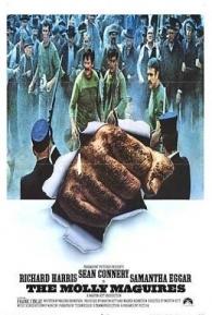 Ver-te-ei no Inferno - Poster / Capa / Cartaz - Oficial 1