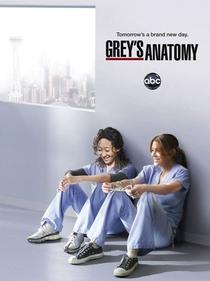 Grey's Anatomy (8ª Temporada) - Poster / Capa / Cartaz - Oficial 2