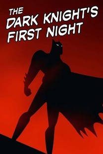 The Dark Knight's First Night - Poster / Capa / Cartaz - Oficial 1