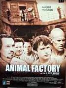 Fábrica de Animais (Animal Factory)