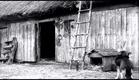 Konopielka 1981 PL