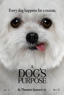 Quatro Vidas de Um Cachorro - Poster / Capa / Cartaz - Oficial 4