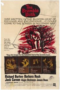 Espinhos na Carne - Poster / Capa / Cartaz - Oficial 1